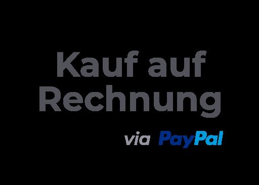 Zahlungsmethode Rechnung mit Paypal